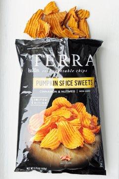 Terra Pumpkin Spice